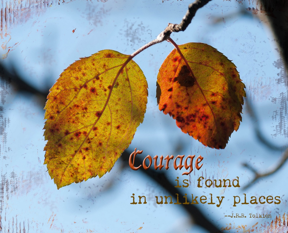 courage in unlikely places